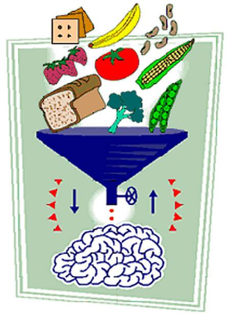 Blog Tays bakers Makanan untuk Otak Anak 3